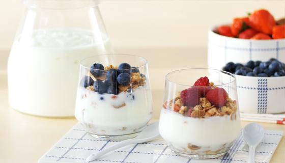 Abbattitore_Casa_abbattitore_domestico_abbattitore_yogurt