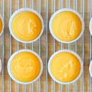 carrot puree Life domestic blast chiller