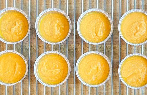 carrot puree Life domestic blast chiller